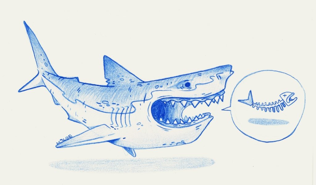 shark sketch, created for charactermart exhibition in edinburgh. Faber-Castell polychromos colouring pencils.